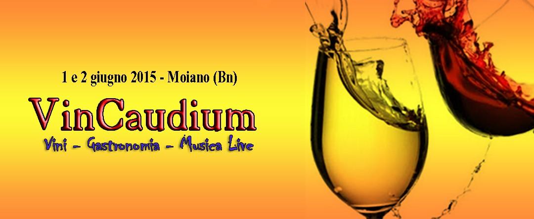 VinCaudium – 1 e 2 giugno 2015 – Moiano Benevento